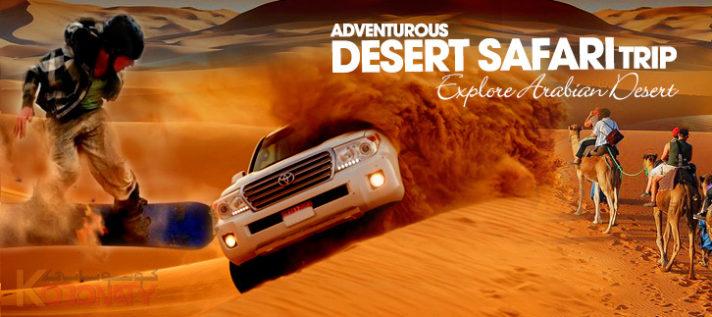 Visit to Dubai Desert Safari 2018